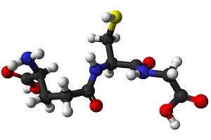 Antioxydant - Spiruline
