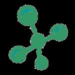 Molécule - spiruline